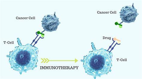 immunotherapy   effective  men