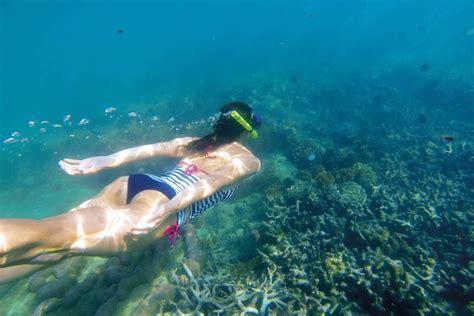 find   snorkelling spots   whitsundays
