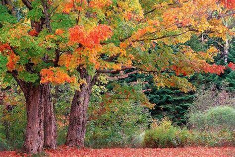 New Hampshire Photo Gallery