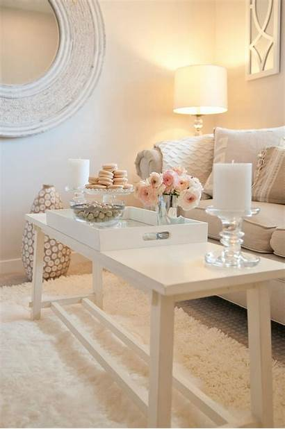Coffee Table Decorating Tray Pink Accent Champagne
