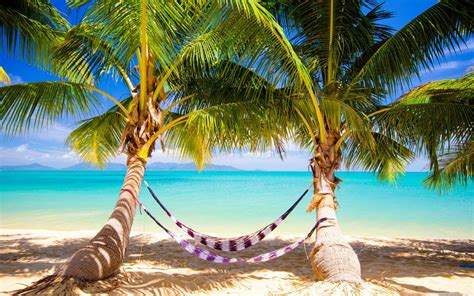 Beach Sand Background Images Tropical Beach Pictures Hammock Wallpaper For Android Flickr