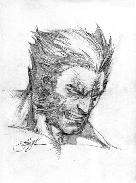 Wolverine Head Sketch By Ebas On Deviantart