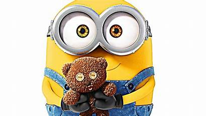 Minion Minions Bob Background Backgrounds Wallpapers King