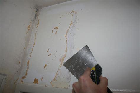 comment d 233 coller le papier peint facilement conseils et