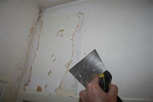 Comment Enlever Le Papier Peint : comment d coller le papier peint facilement blog ~ Dailycaller-alerts.com Idées de Décoration