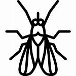 Fly Icon Icons