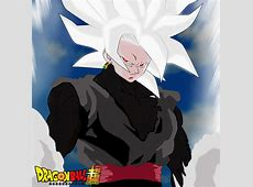 And White Ssj2 Images Black Goku 9