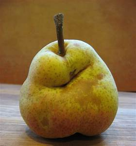 Pear grit and the art of aging | The Botanist in the Kitchen  Pear
