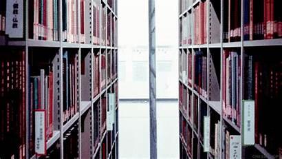Books Library Animation Ookami Anime Gifs Kodomo
