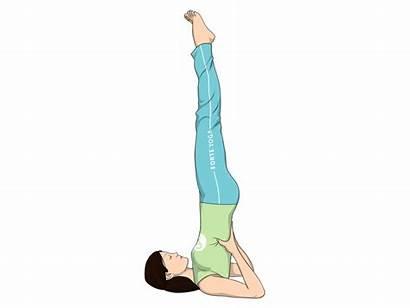 Yoga Pose Supported Shoulderstand Shoulder Stand Balance