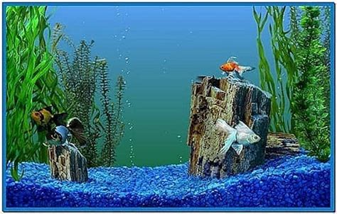 microsoft windows  aquarium screensavers