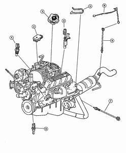 1993 Dodge Dakota Sensor  Coolant Temperature  Torque