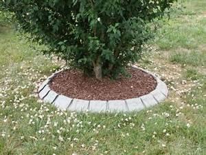 Lawn Edging Tree Ring Landscape Edging Blog Innovative Steel Landscape Edging