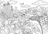 Desert Coloring Printable Adult Favoreads Adults Sheets sketch template