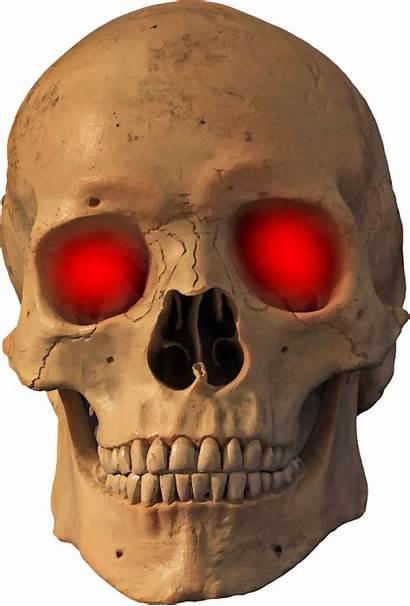 Skull Evil Skeleton Fire Jaw Clipart Bone