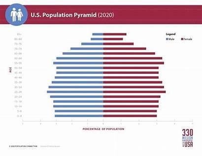 Population Pyramid Infographic Usa Age Diagram Graphic