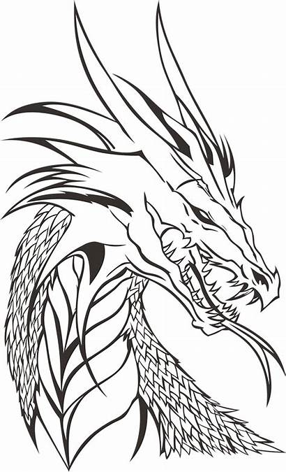 Dragon Drawing Drawings Dragons Cool Head Simple