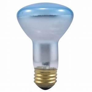 Sylvania grow lamp flood bulb light bulbs walmart