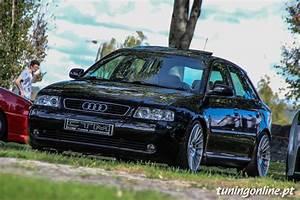 Audi A3 8l 1 9tdi German Shepherd