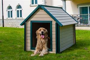 doghouse all weather outdoor big pet dog house extra large With outdoor dog houses for extra large dogs