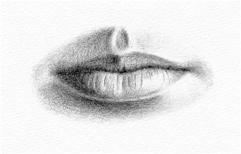 pencil portraits   draw  mouth