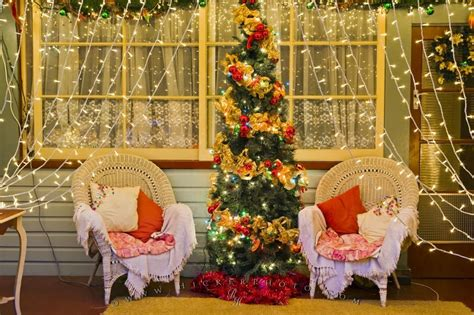 elegant decorated christmas lights  tree scene photo