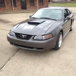 Whiteboy's Mustangs: 2003 mustang GT DSG