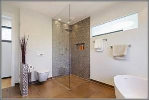Dusche Und Badewanne Kombiniert : badewanne und dusche kombiniert badewanne house und dekor galerie 7zgld1egvn ~ Sanjose-hotels-ca.com Haus und Dekorationen