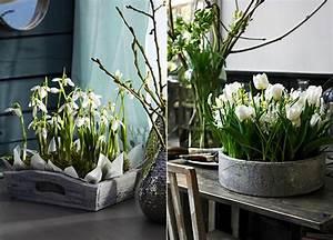 Tischdeko Frühling 2017 : fr hlingsdeko mit fr hlingsblumen kreative tischdeko ~ A.2002-acura-tl-radio.info Haus und Dekorationen