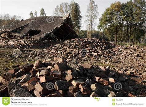 existence des chambres à gaz blocaille des chambres à gaz détruites à auschwitz
