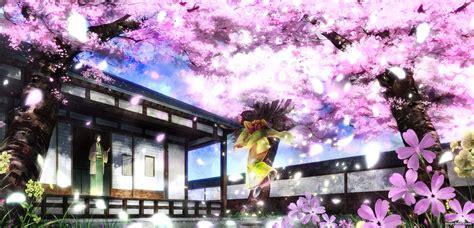 spring  anime   nopys blog