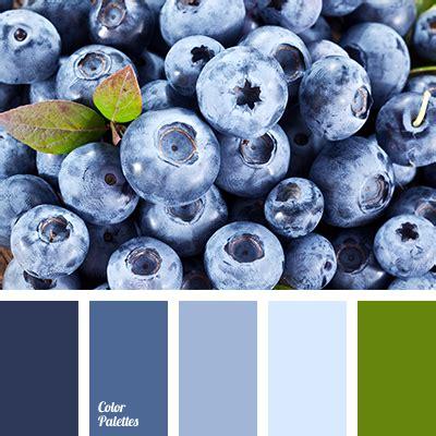 what color are blueberries blueberries color color palette ideas