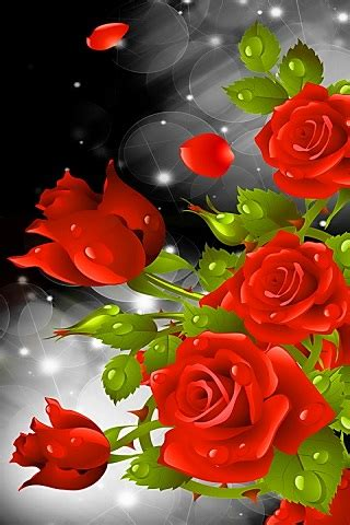 red rose party  wallpaper android app  apk