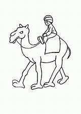 Coloring Camel Caravan Popular Cranky sketch template