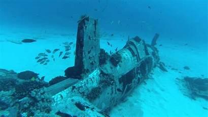 Dive Diving Scuba Panama Wreck Florida Beach