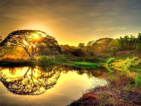 beautiful gold sunrise sky clouds tree lake reflection