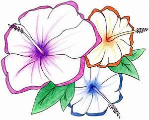 Rainbow Hawaiian Flowers by v8tiger on DeviantArt