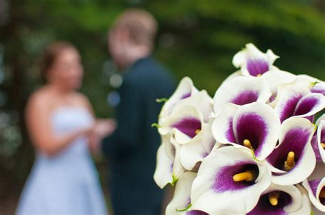 wedding flowers bokeh  paladin  deviantart