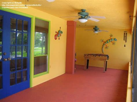 home talk mexican theme not for the faint of heart 1 by