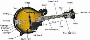 Buying Guide  How To Choose A Mandolin