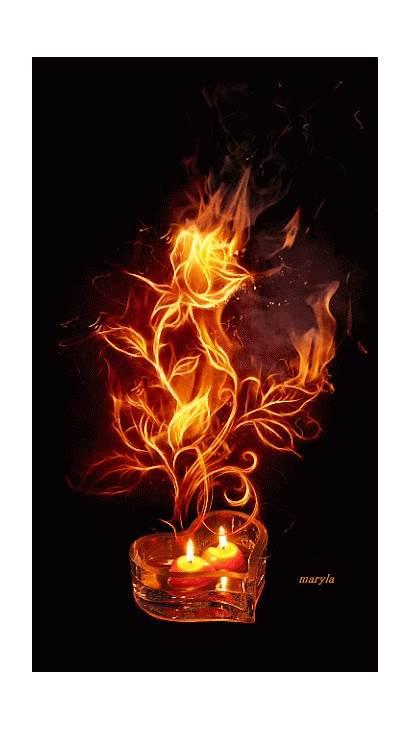 Rose Animated Roses Burning Gifs Candle Animation