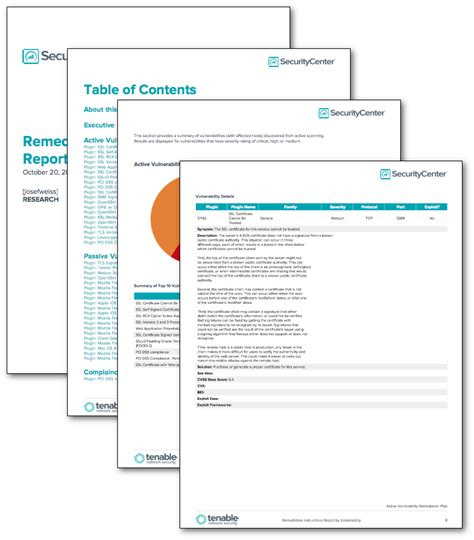 Security Remediation Plan Template by Remediation Report By Vulnerability Sc