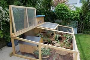Kaninchenstall Selber Bauen Für Draußen : ideen und tipps f r aussengehege auf der terrasse meerschweinchenplattform aussengehege ~ A.2002-acura-tl-radio.info Haus und Dekorationen