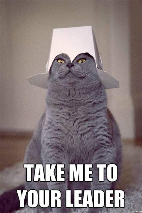 Cat Alien Meme - take me to your leader memes pinterest