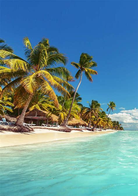 Sunscape Bavaro Beach Punta Cana In 2019 Dominican