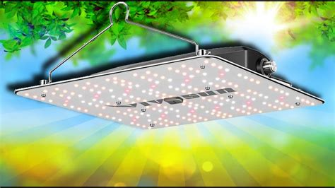 The quantum board is a large circuit board in which a string of leds are connected forming intelligent spectrum string resulting in a broader spectrum and bigger plants. Best budget grow light? VIVOSUN - Quantum Board - VS1000 ...
