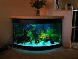 Tropical Fish Centre Ander s Aquarium