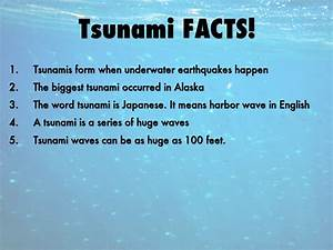 Facts About Tsunami - The Best Fact In 2017