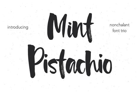What Of Font Do You Use For A Resume by Mint Pistachio Font Trio Script Fonts Creative Market