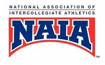 Image result for naia logo